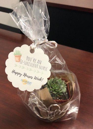 Celebrating Nurses and Nursing Homes | Guardian Florida