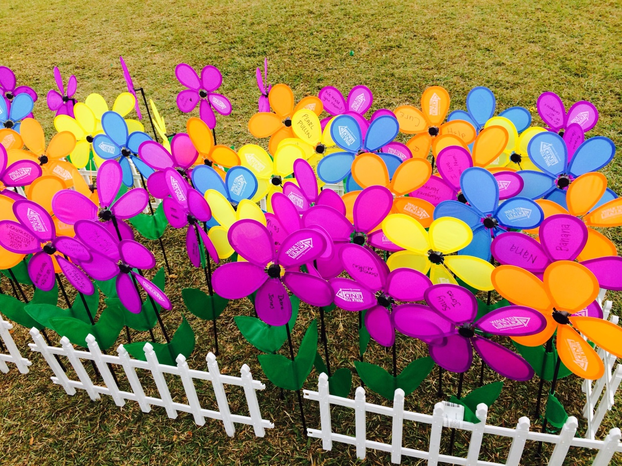 Each Walk to END Alzheimer's event features The Promise Garden with different color flowers highlighting the reasons why participants walk. Purple stands for losing someone to Alzheimer's disease. Orange shows support for the cause and a vision of a world without Alzheimer's.  Yellow means participants support or care for someone with Alzheimer's, and blue is for those participants who have Alzheimer's.